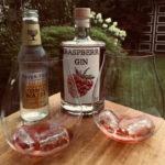 Raspberr Gin