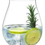 Riedel Gin Glas Set