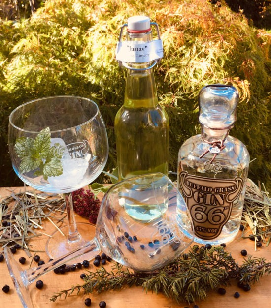 Abtshof Buffalo Grass Gin 66