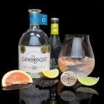 Ginologist Citrus Gin