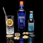 Larios 12 Gin