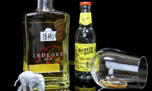 Ibhu Indlovu Gin im Review auf ginvasion.de