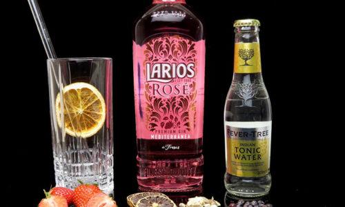Larios Rosé im Review auf ginvasion.de