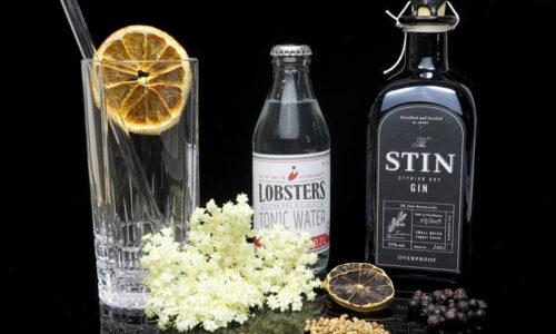 STIN Gin Overproof im Review auf ginvasion.de