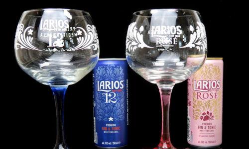 Larios Premium Gin&Tonic aus der Dose im Review auf ginvasion.de