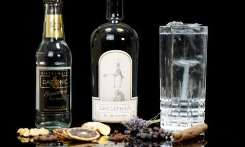 Leviathan Gin im Review auf ginvasion.de
