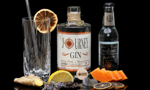 Journey Gin South America im Review auf ginvasion.de