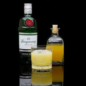 Der Tanqueray Imported Gin im Review auf ginvasion.de