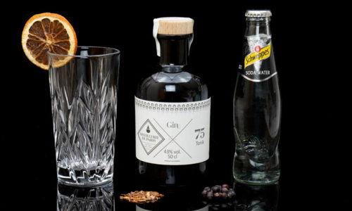 Der Gin Tonik im Review auf ginvasion.de
