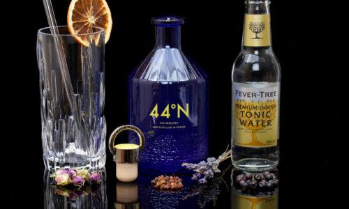 Der 44°N Gin im Review auf ginvasion.de